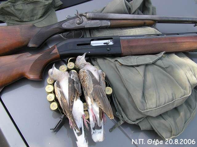 Δύο όπλα διαφορετικών εποχών και δύο τρυγόνια